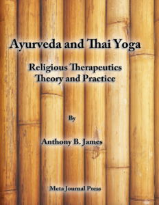 Ayurveda and Thai Yoga Religious Therapeutics Theory and Practice