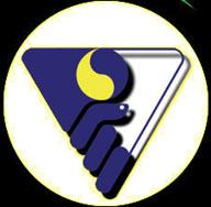 panamerican_logo