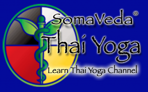 Thai Yoga Practitioner Adjunct Courses