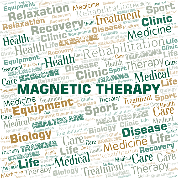 SomaVeda® Bio-Magnetic Therapy