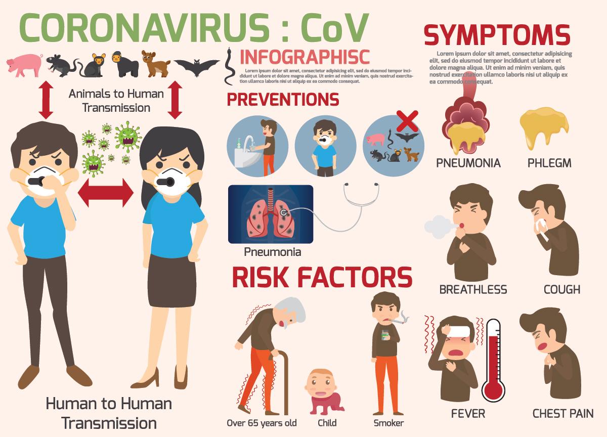 Corona Virus Information Chart